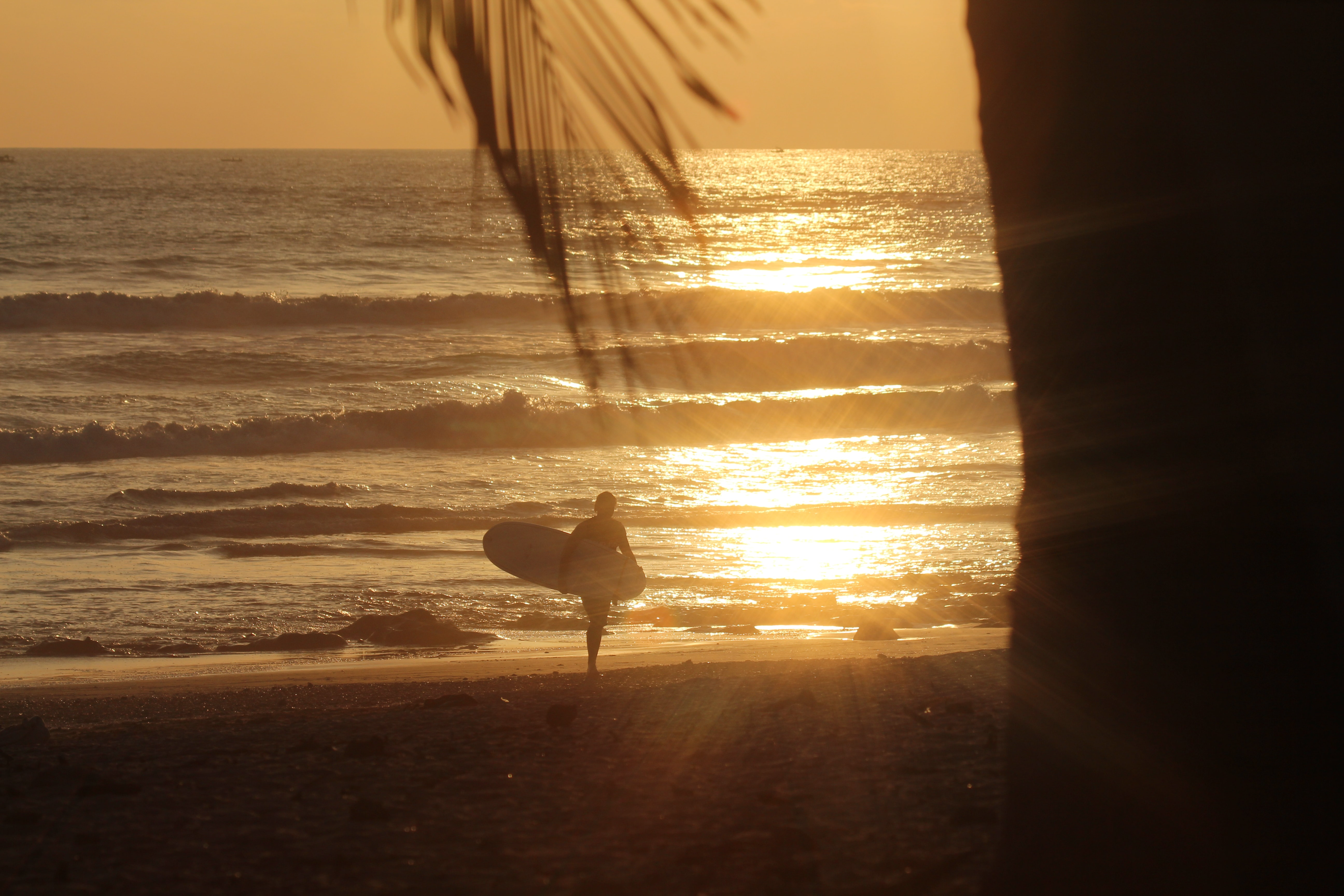 A surfer leaving the sea at sunset, carrying his board as the sun sets in the distance behind