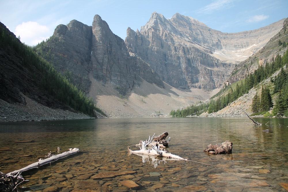 body of water near gray mountain