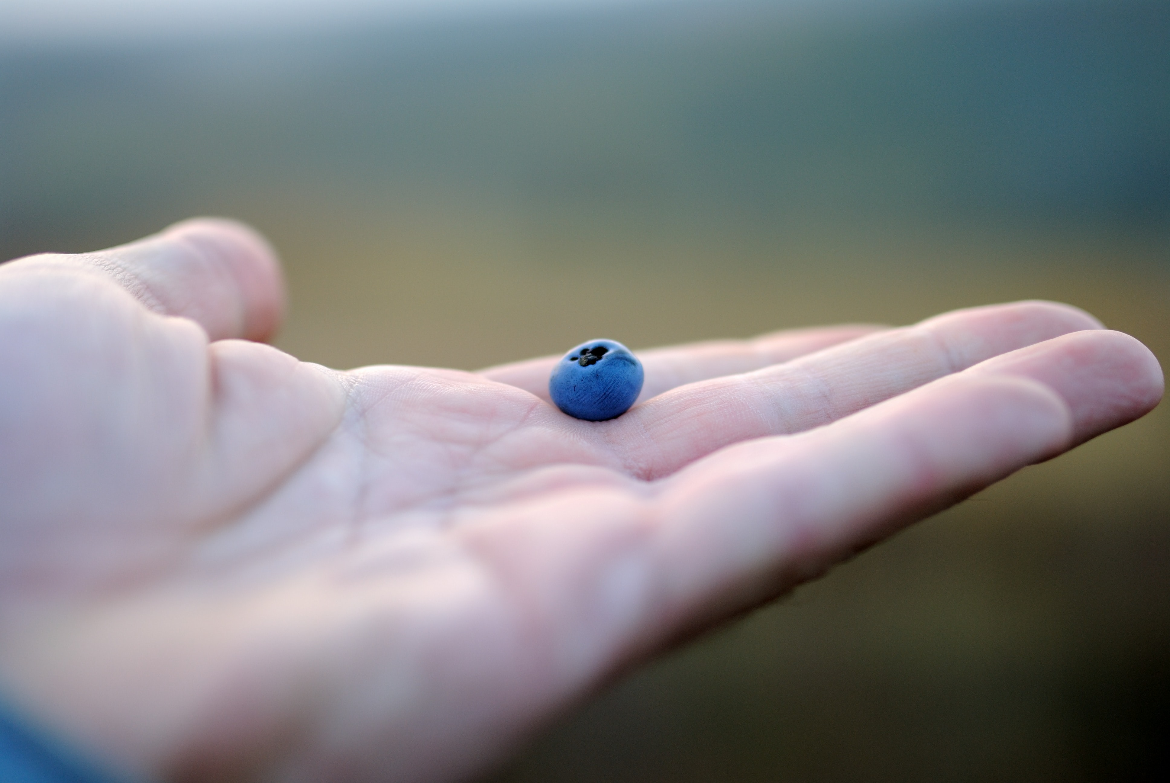 person holding blue bead