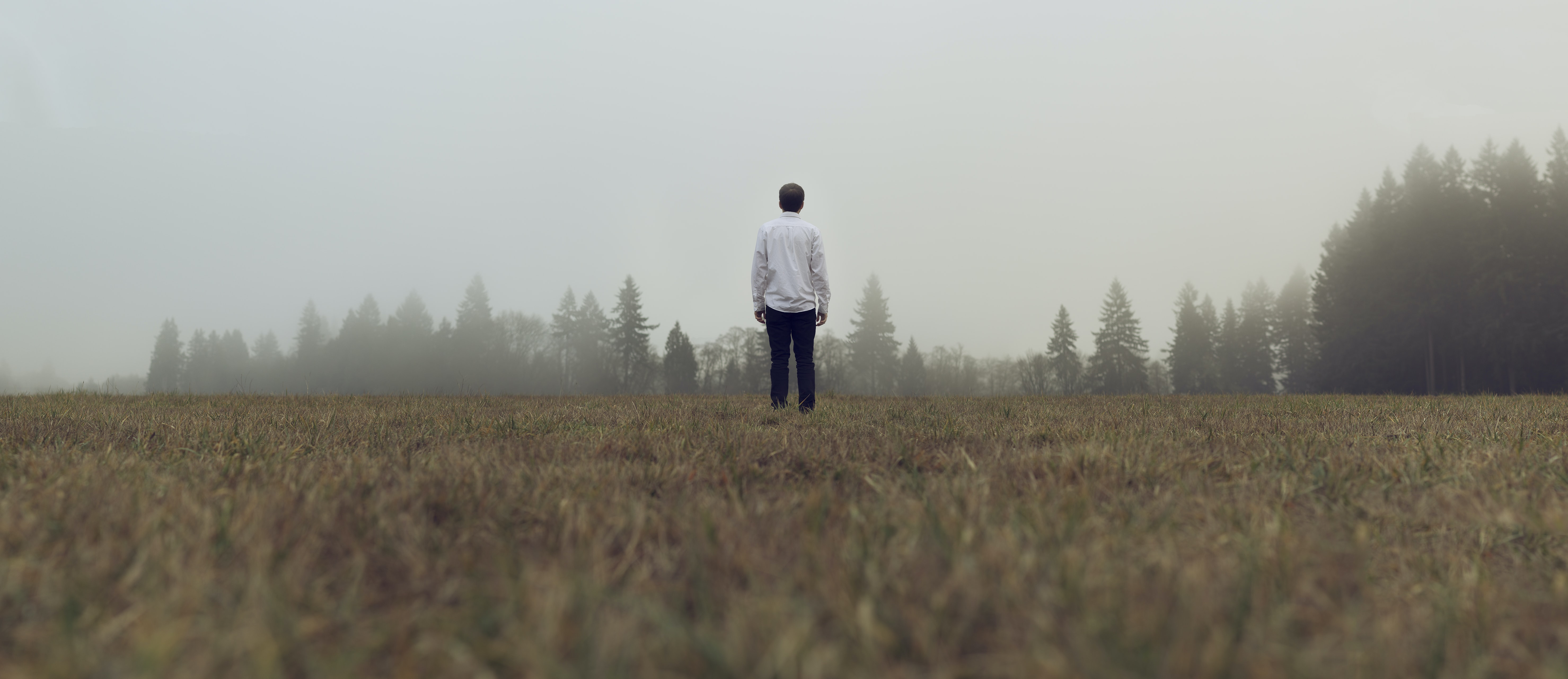 man standing in front of forest with fog