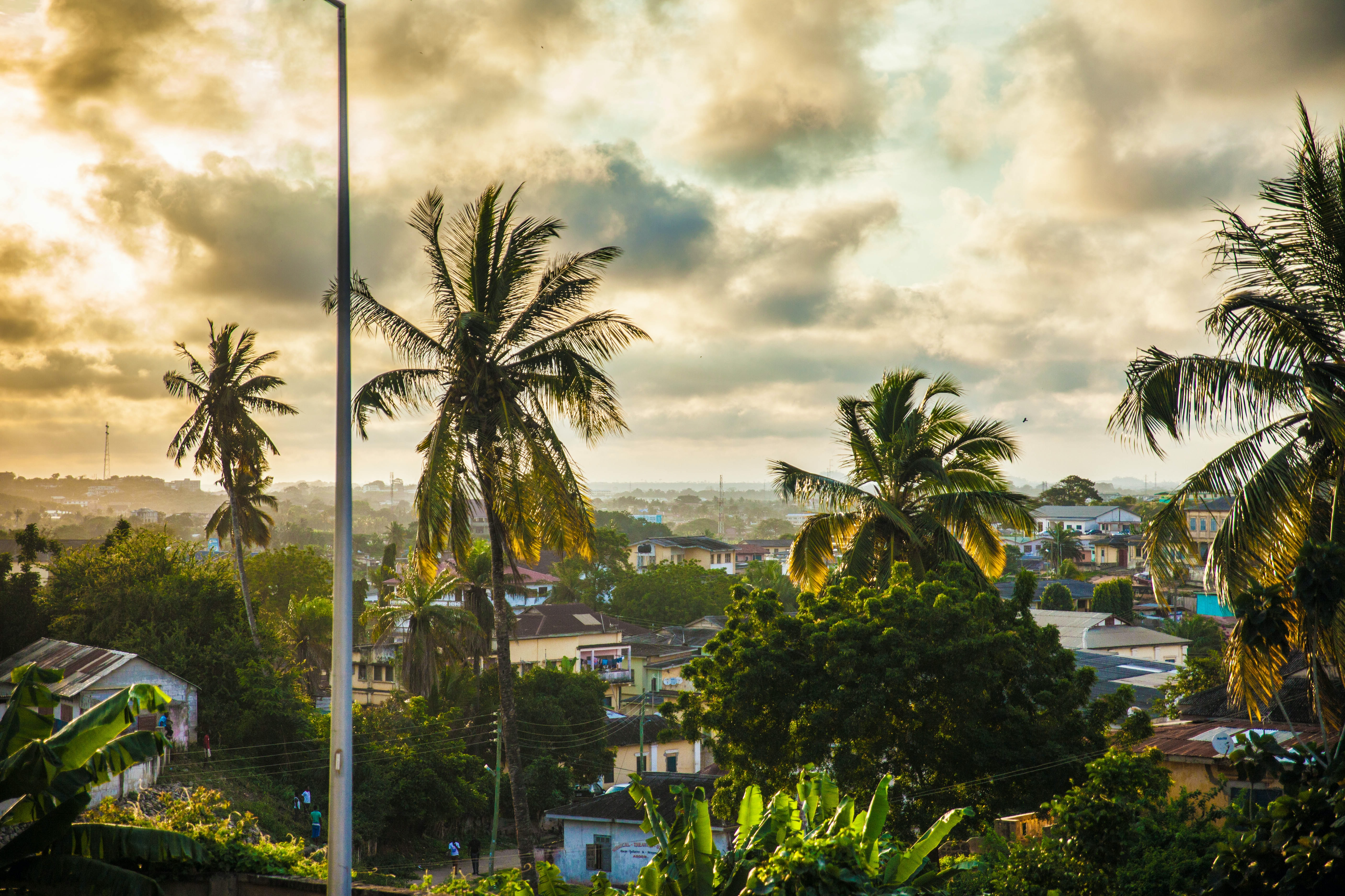 A cloudy neighborhood filled with palm trees