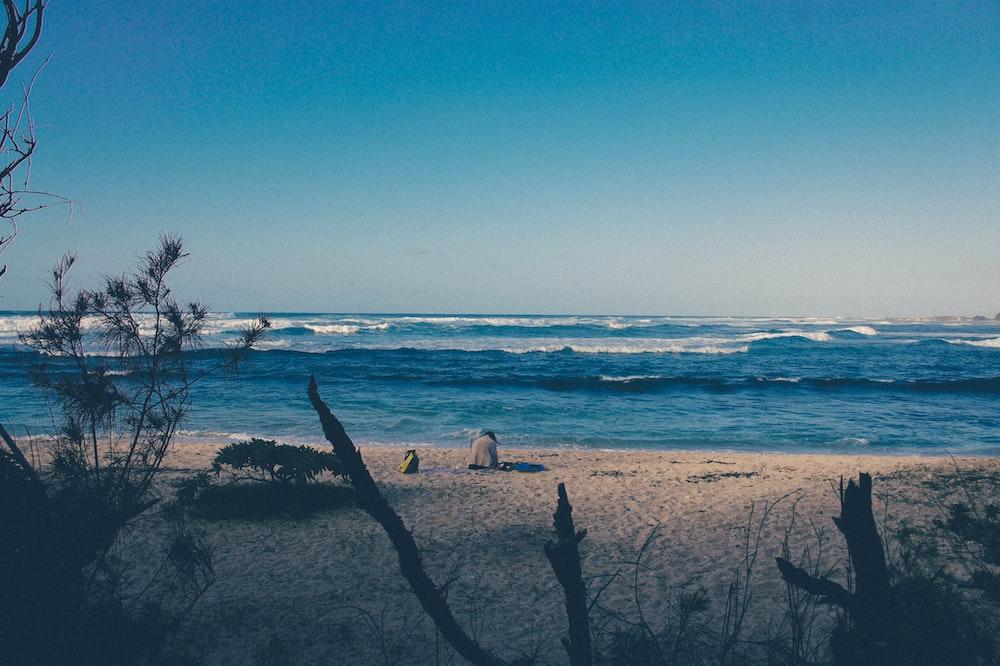 seascape photography of seashore